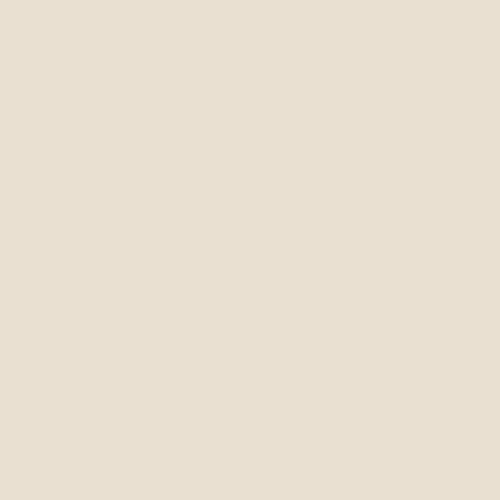 Jersey solid - Katia - colore 08