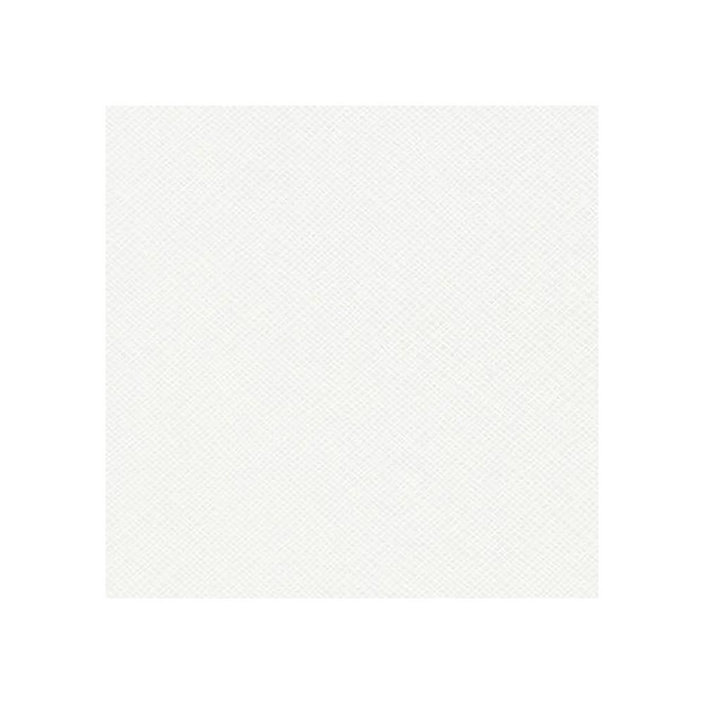Retro - Widescreen by Carolyn Friedlander - WHITE