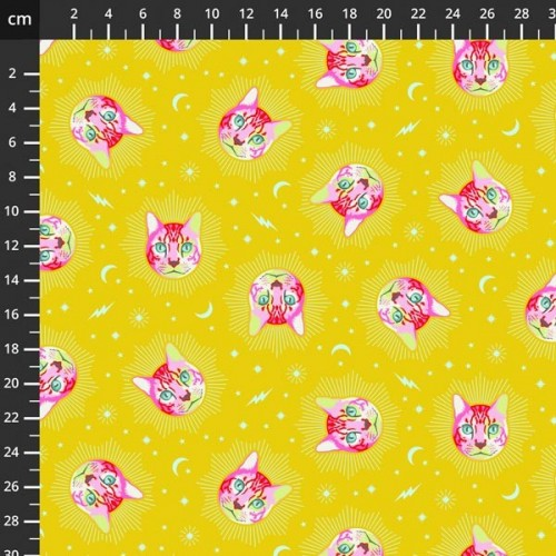 Curiouse by Tula Pink - 8201-119