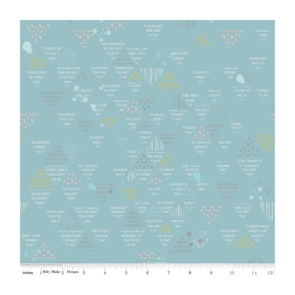 Dear diary - C6674-blue